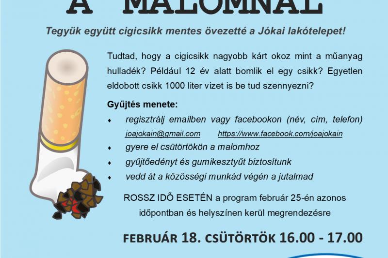 Cigicsikk gyűjtés A MALOMNÁL